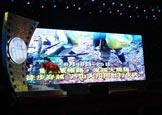 雅安熊猫电影节颁奖晚会