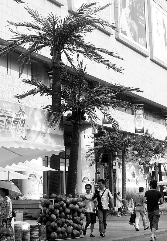 7月7日,在杭州市延安路上,几棵仿真椰子树吸引了路人的目光.