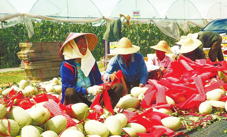 2008年北京奥运会_2008年北京残奥会_2008年农民纯收入