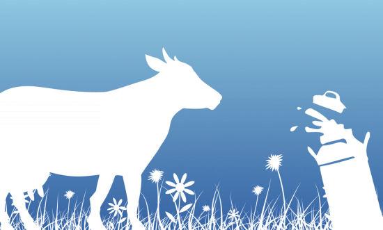 从山东胶东半岛,到河北唐山,蒙牛与奶农的供需矛盾纠纷在时间和空间上蔓延,同时也预示着奶业的寒冬远未结束。   2014年9月底,《第一财经日报》记者独家报道了蒙牛对胶东地区原奶收购价直降1元/公斤,也由此揭开了中国奶业周期之痛。转眼间,一年零三个月过去了。近日,蒙牛唐山工厂门前又出现收奶纠纷:合作牧场在为每天挤下来的生鲜乳呼吁销路,蒙牛方面则在因原奶过剩苦不堪言。   值得关注的是,前来苦寻出路的恰恰是中鼎牧业托管的牧场,中鼎牧业则是由老蒙牛人出来创办的企业,并且2015年1~5月,其35%的销售收入