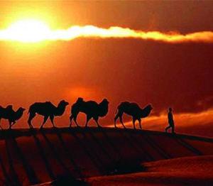 """""""丝绸之路国际旅游文化节""""7月将举行"""