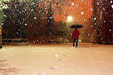 北京迎来立冬后首场降雪