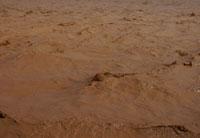 黄河水含沙量巨大