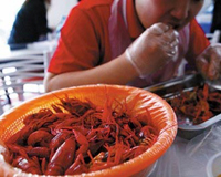 腐蚀过后的小龙虾虾钳容易脱落