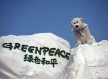 冰山漂至气候谈判会场 提醒关注气候变化