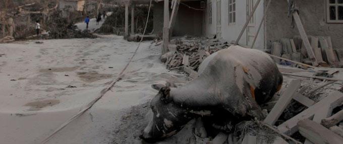 印尼火山灰覆盖村庄