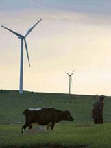 通用电气:风车创造奇迹