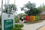 国际竹藤展园