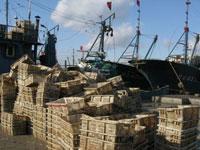 《中韩渔业协定》