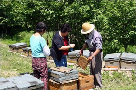 南京市瑞康蜂业有限公司