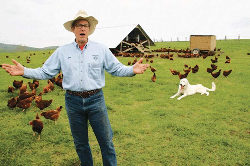 """位于美国弗吉尼亚州雪兰多山谷的""""宝丽费斯""""有机农场,有着看似古怪的原则。"""