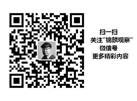"""欢迎关注""""锦麟观察""""公共号"""