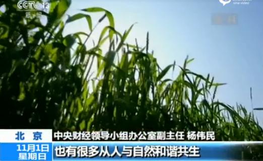 国平:坚持绿色发展,建设美丽中国