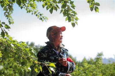 68岁护林员巡山20年 曾下跪劝大妈别点火