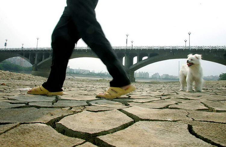 图文:涪江下游断流长达23天