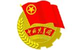 中国共产主义青年团章程第七、八、九章