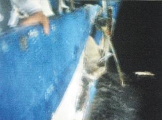 日舰在钓鱼岛海域撞沉台湾渔船画面曝光(图)