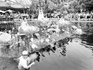 番禺宝墨园开 水色 盛宴