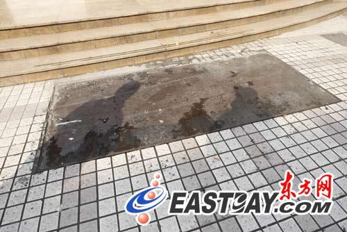 上海黄浦区女官员坠楼身亡曾因陈良宇案被约谈