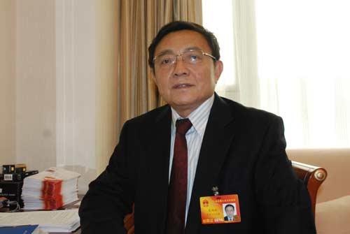 姜鸿斌代表:发放农民房屋产权证有利城镇化建设
