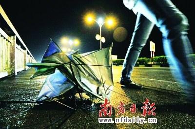 广东潮州等地受鲇鱼影响进入应急状态
