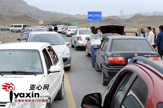 """新疆天山野生动物园五一假期首日""""迎客难"""""""