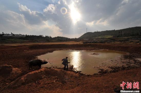 2012年3月,云南省曲靖市师宗县葵山镇海子村接近干枯的水塘。沈良启 摄 图片来源:CNSPHOTO
