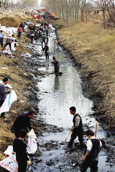 昨日,泄漏的原油浮在于家务村东口的河道中,工作人员正在将受污染的土壤装袋。