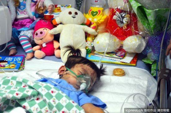 2011年7月26日,不少温州当地市民带着许多玩偶赶到医院看望小伊伊。图片来源:东方IC