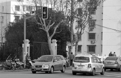 """新交规的实施让许多司机对""""黄灯""""提高警惕   记者 周斌 现场图片"""