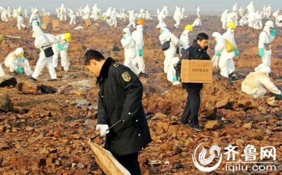 青岛清理千人战组织中石化东黄输油管道v苹果什么5c苹果好看图纸黑色贴图片