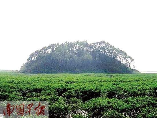 位于钦州的抄墩岛。广西 自治区海洋局海域和海岛管理处供图