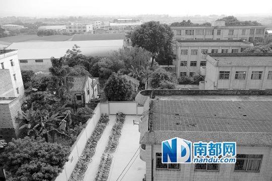 广州中学遭垢染袭扰:先生上课掉落泪教养员己触动调