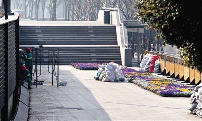 昨日,上海市发布外滩拥挤踩踏事件调查报告,发生踩踏事件的陈毅广场附近区域正进行封闭整修和绿化养护。新华社记者 裴鑫 摄