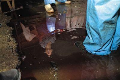 屠宰 被查办的黑窝点内,生猪屠宰后留住的满地猪血没过鞋面。