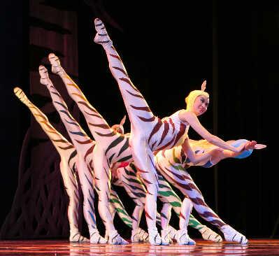 文化新闻 正文          舞剧《野斑马》    东方艺术中心原创舞剧
