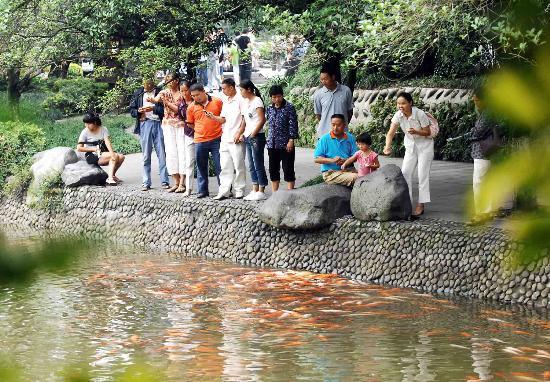 图文:游客在四川都江堰景区离堆公园观鱼