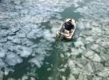 图文:一片冰心在西湖