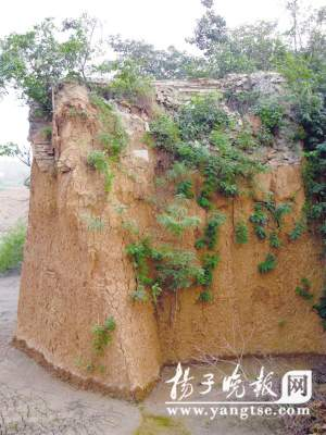 Nanjing is in bluff to discover Zhu Yuanzhang is small female barrow (group plan)