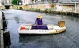 广州问题液态牛奶直排河道污染水质(组图)