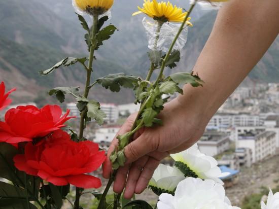 图文:鲜花代表震后人们对明天的渴望