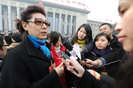 图文:全国政协委员关牧村接受记者采访