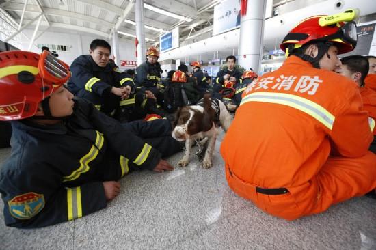 消防队救出44名幸存者