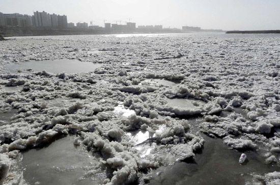 黄河内蒙古乌海段流凌密度增大。新华社记者 李云平摄