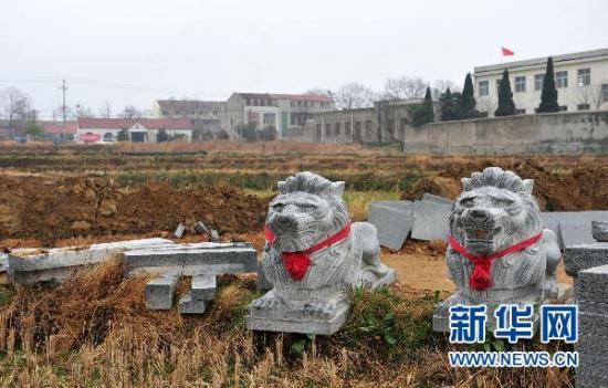 """已被拆除还没有安置到位的石狮子摆放在豪华""""活人墓""""旁边的稻田埂上(2月27日摄)。 新华社记者 郝同前 摄"""