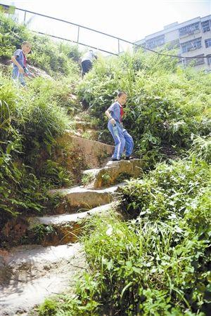 学生们每天就是要爬这样的陡坡求学,险象环生。