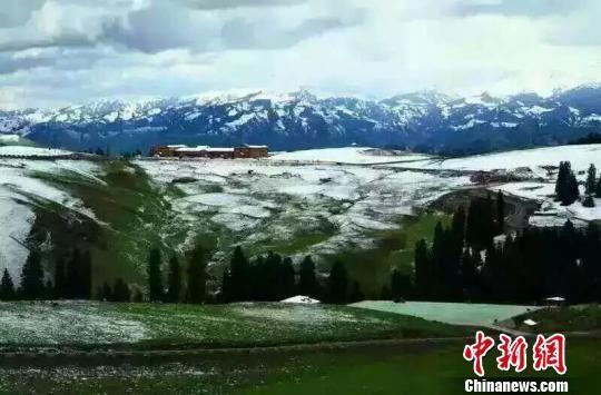 中新网乌鲁木齐8月15日电(记者 王小军) 15日,新疆高海拔区域出现降雪,清晨新疆天池开始降雪,记者从新疆奇台县获悉,当天该县境内江布拉克风景区也下雪了,到目前为止前山降雪已经停止,但后山降雪仍在持续。   新疆高海拔地区受冷空气影响,都会出现降雪天气,天山博格达峰海拔5445米,终年积雪,冰川延绵。天池在天山北坡三工河上游,湖面海拔1900多米。奇台县江布拉克景区海拔3000多米,高寒地区受冷空气影响,8月降雪不足为奇。但对于新疆以外大部分地区来讲,8月份正值酷暑时节,新疆8月降雪消息经网民发布后