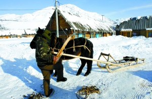新疆阿勒泰开发旅游被指侵扰蒙古族原始部落