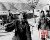 记者探访延安插队知青:从北京女生到陕北婆姨
