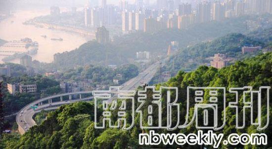 """今年以来,青岛和重庆两城皆因创建""""国家森林城市""""扰民而颇受争议。"""